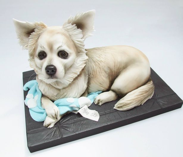 PAY-BAKER-CREATES-INCREDIBLY-LIFE-LIKE-DOG-CAKES (3)
