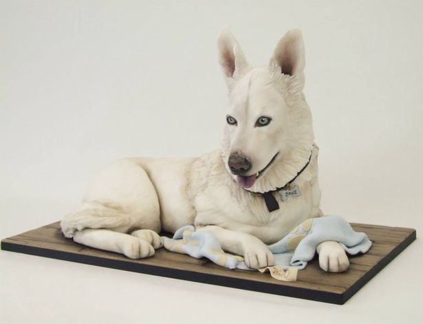 PAY-BAKER-CREATES-INCREDIBLY-LIFE-LIKE-DOG-CAKES (7)