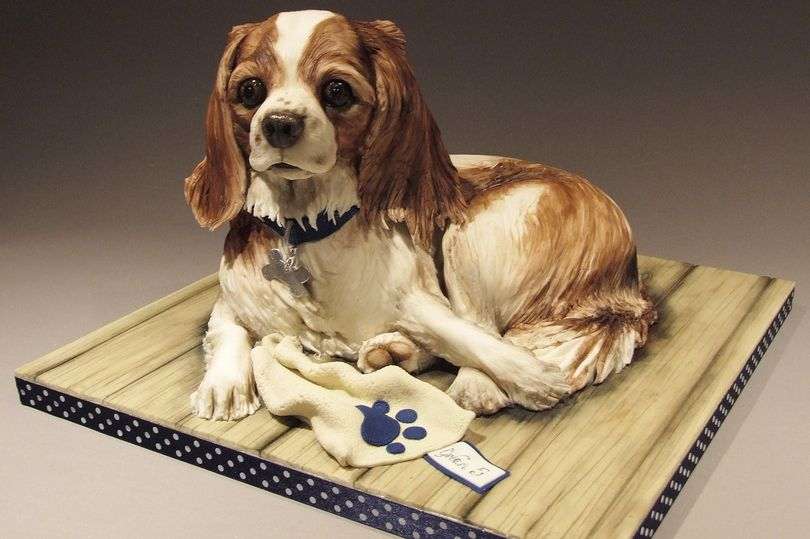 PAY-BAKER-CREATES-INCREDIBLY-LIFE-LIKE-DOG-CAKES