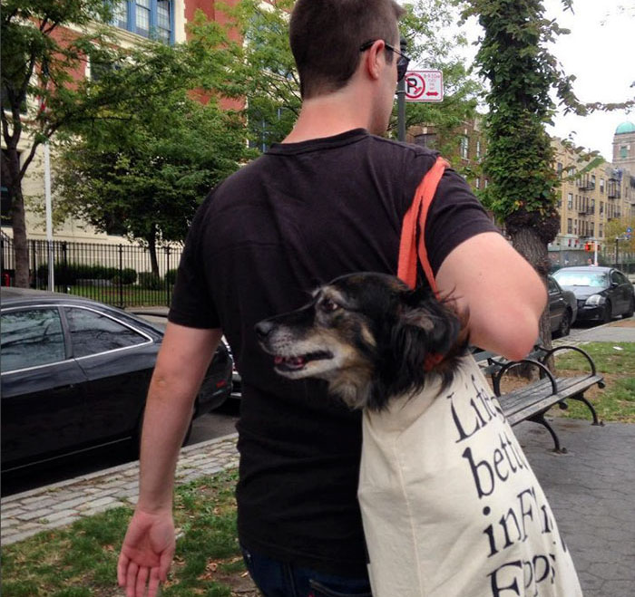 man-with-giant-dog-tote-bag-new-york-subway-2a