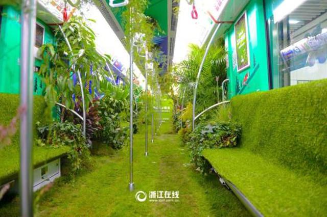 nature_subway