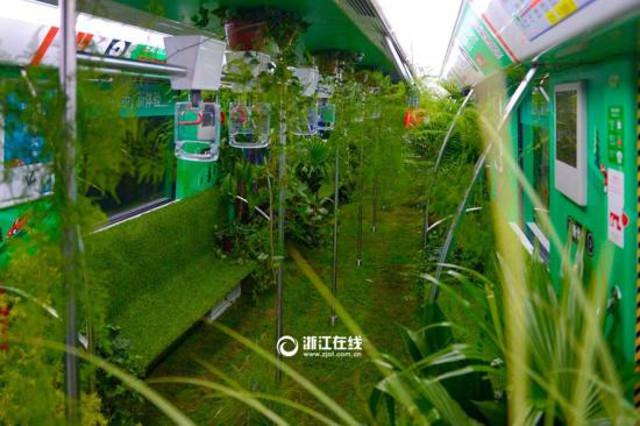 nature_subway3