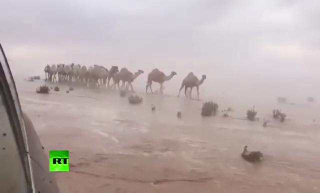 น้ำท่วมฉับพลันกลางทะเลทราย